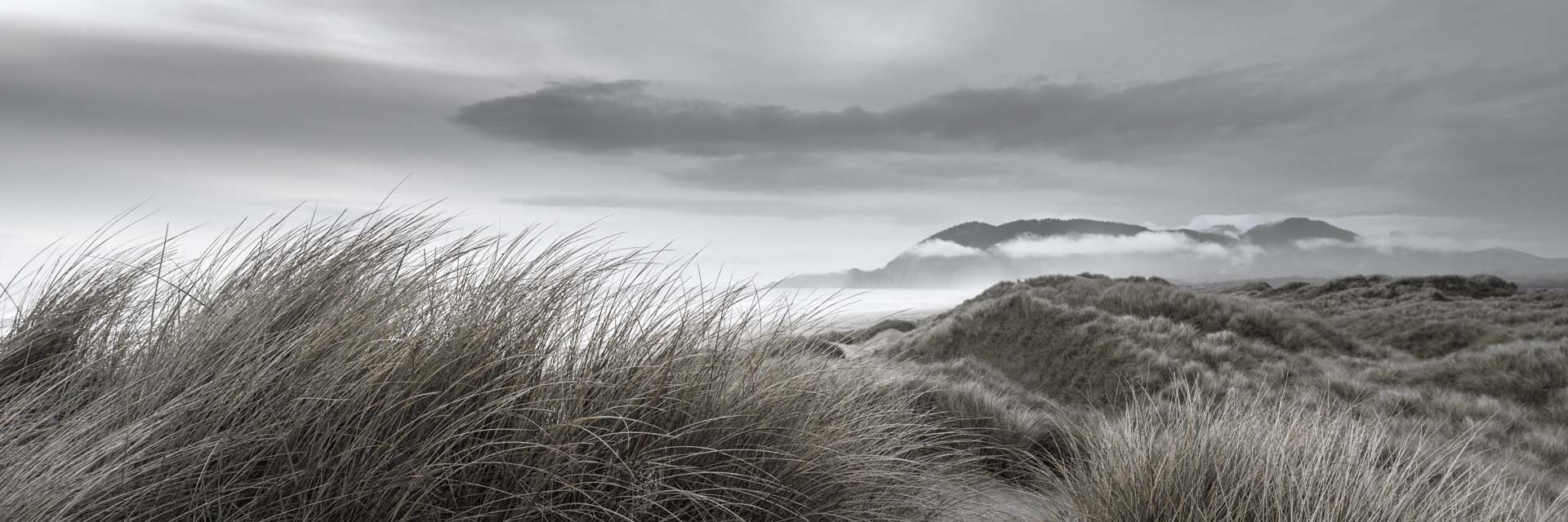 Coastal Dunes at Dusk, copyright © Don Schwartz