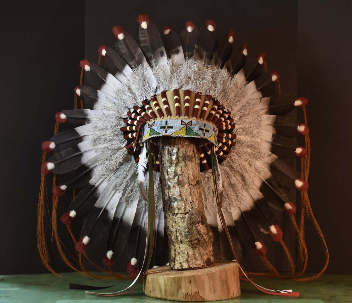 The Plains Warbonnet, copyright © Takeshi Yonezawa