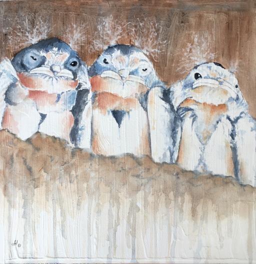 Baby Barn swallows , copyright © Sherry Hanson