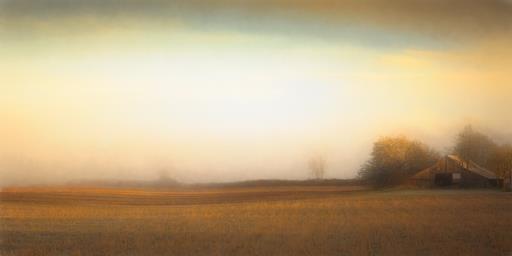 Barn on a Foggy Morning, copyright © Don Schwartz