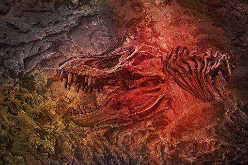 Dino2F_B, copyright © Kathy Doty