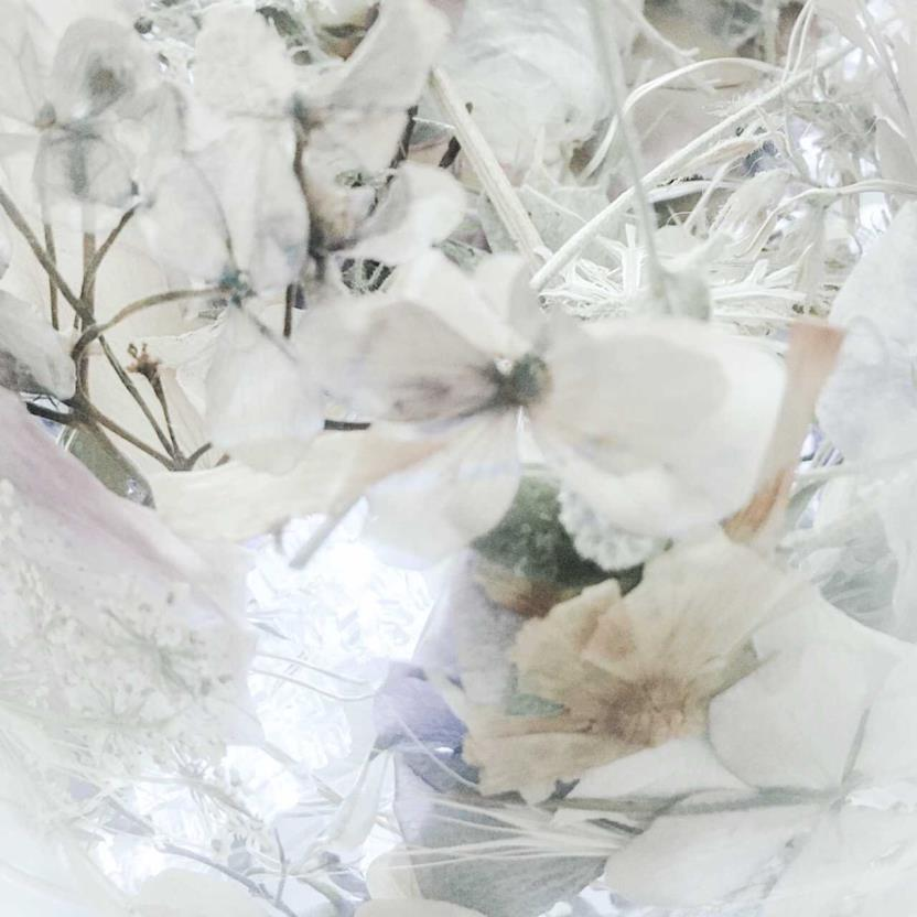 Winter, copyright © Julie Lloyd