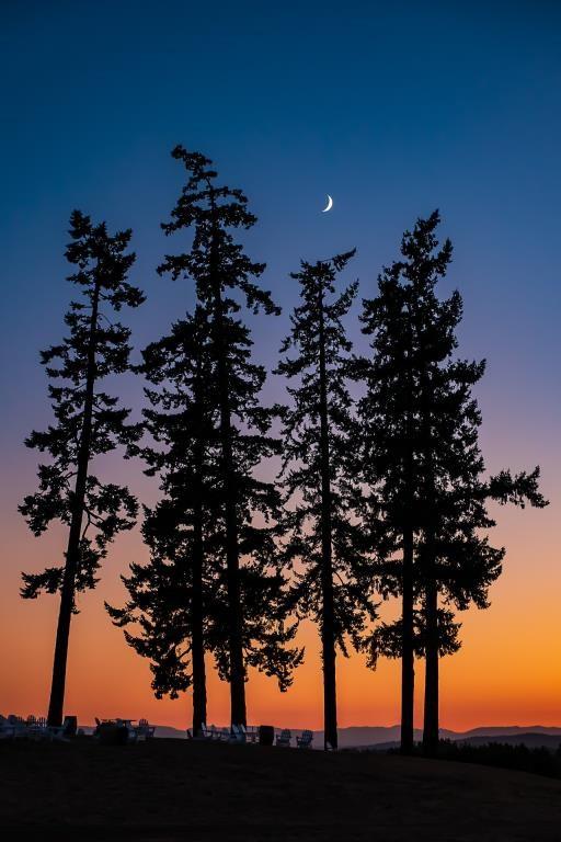 Crescent Moon, copyright © Rebecca Benoit