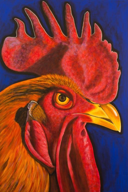 Red Rooster, copyright © Teal Buehler