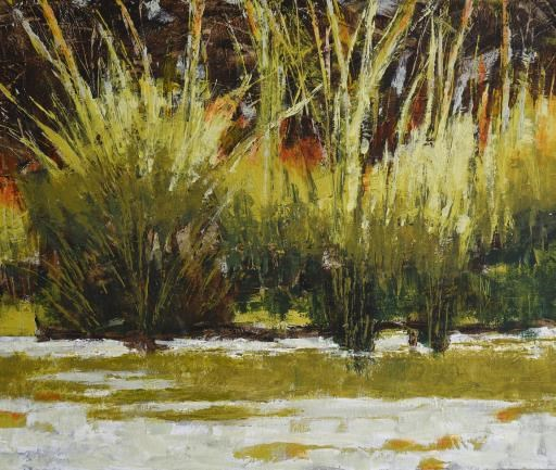Pond Grasses, copyright © Melody Cleary
