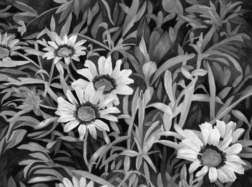 Sunflowers , copyright © Rosalind Kane