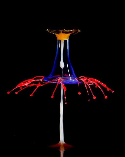 Water drop Collision, copyright © Richard Stanton