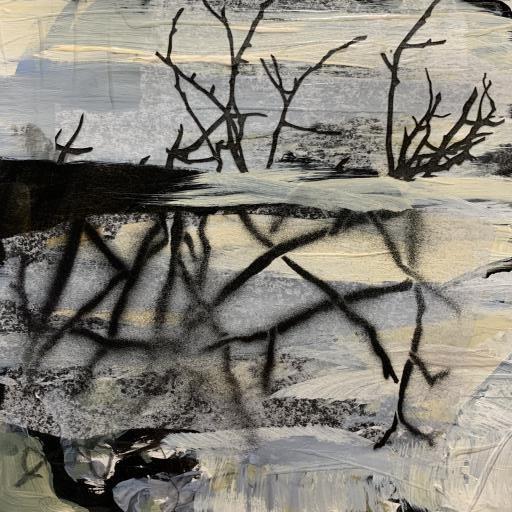 Flood Plain, copyright © Jo Reimer