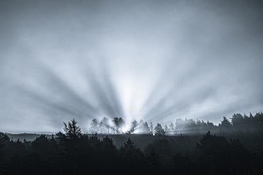 Sunrise Ephiphany, copyright © Don Schwartz