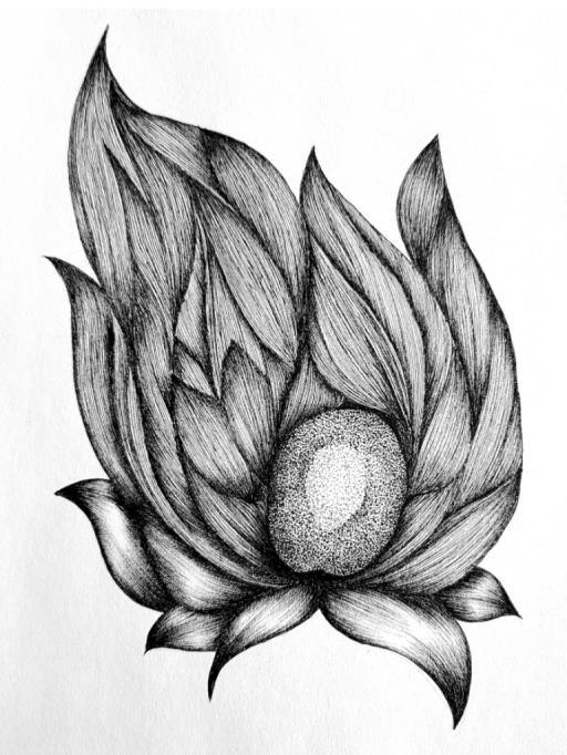 Partial flower, copyright © Sarah Rikaz