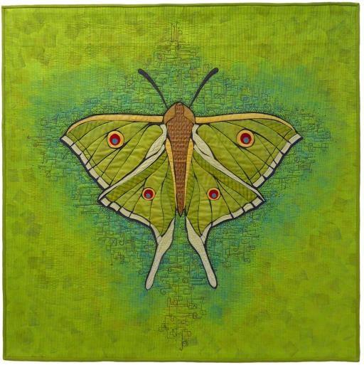 Luna Moth, copyright © Terry Grant