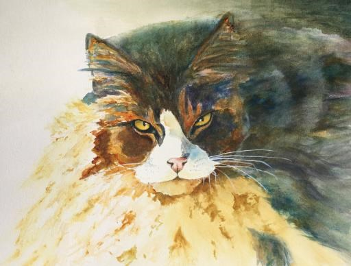 Barn Cat, copyright © Sherry Hanson