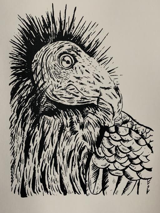 King of the Avian, copyright © Ryan Middaugh